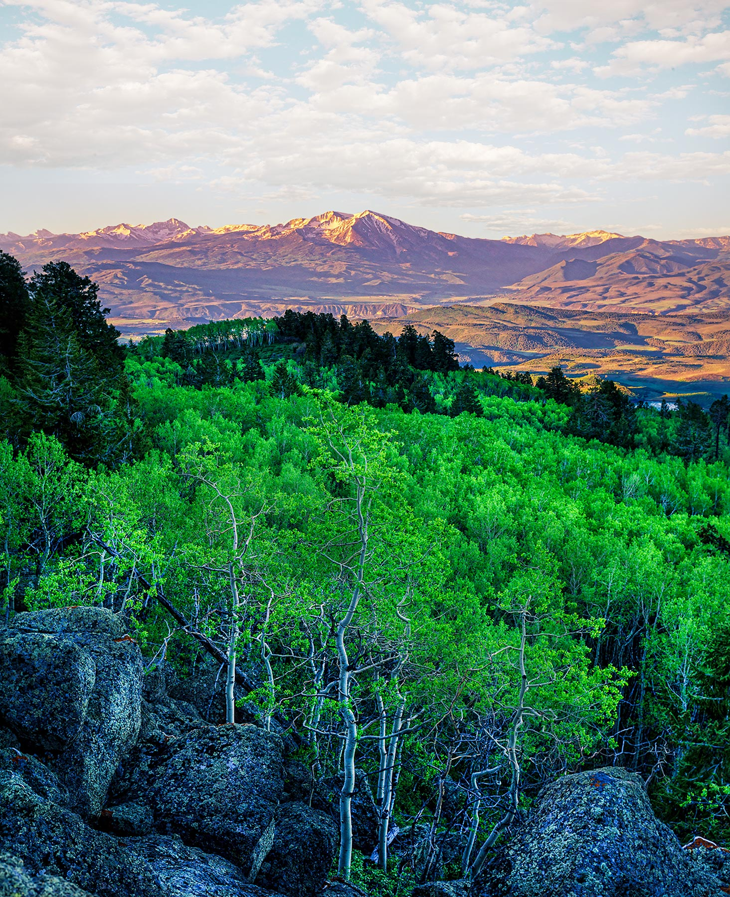 Sopris-and-Aspens-1